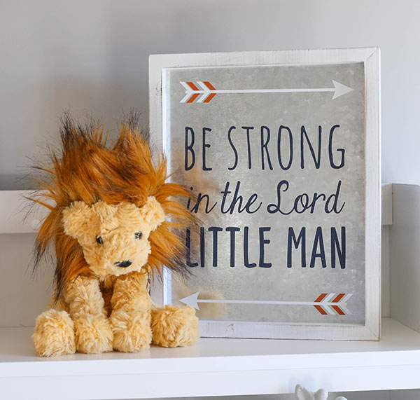 image of lion stuffed animal and framed sign on shelf